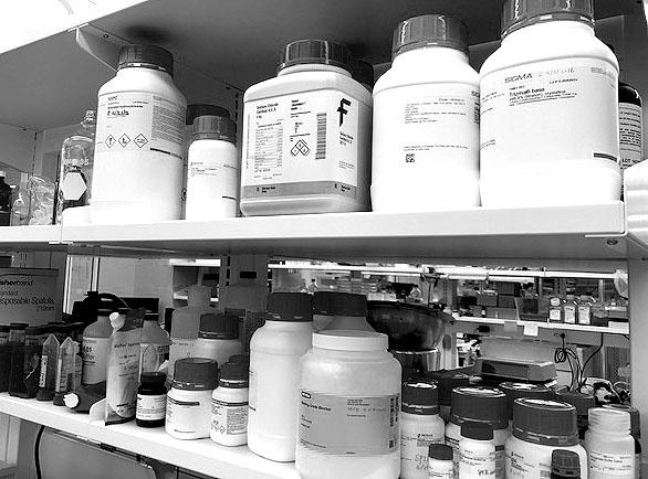 Lab chemicals image bw